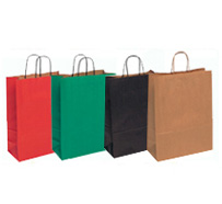 Kraft Paper Bags Twist Handle