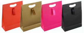 Paper Bags with Ribbon Handle